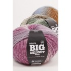 DROPS Big Delight 100g